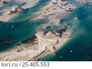 Купить «Chausey Islands at low tide from the air, showing oyster farming structures. Normandy, France 2004», фото № 25405553, снято 15 октября 2018 г. (c) Nature Picture Library / Фотобанк Лори