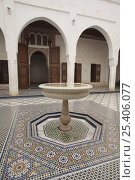 Купить «Fountain in the intricate courtyard of Bahía Palace in Marrakech, Morocco December 2007», фото № 25406077, снято 16 августа 2018 г. (c) Nature Picture Library / Фотобанк Лори