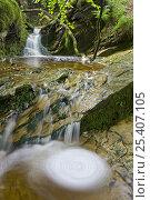 Купить «Whirlpool and waterfalls in an Exmoor stream, Exmoor NP, Somerset, UK», фото № 25407105, снято 21 июля 2018 г. (c) Nature Picture Library / Фотобанк Лори