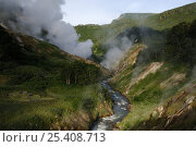 Купить «The Geyser River and its geysers, Valley of the Geysers, Kronotsky Zapovednik, Kamchatka, Far East Russia, June 2005 (two years before a landslide changed the face of the valley forever)», фото № 25408713, снято 22 мая 2018 г. (c) Nature Picture Library / Фотобанк Лори