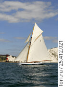 "Купить «""Mariquita"" sailing past the Needles Lighthouse during Round the Island Race, The British Classic Yacht Club Regatta, Cowes Classic Week, July 2008», фото № 25412021, снято 24 января 2020 г. (c) Nature Picture Library / Фотобанк Лори"