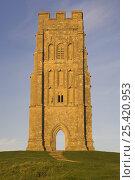 Купить «Remains of St Michaels Church at the summit of Glastonbury Tor at dawn, Glastonbury, Somerset, UK», фото № 25420953, снято 15 октября 2018 г. (c) Nature Picture Library / Фотобанк Лори