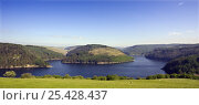 Llyn Brianne Reservoir, Carmarthenshire, Wales. Close to the Dinas RSPB Reserve. Стоковое фото, фотограф David Kjaer / Nature Picture Library / Фотобанк Лори