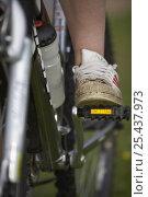 Купить «Close up of womans foot resting on pedal of mountain bike, Sutherland, Scotland, UK 2006», фото № 25437973, снято 17 июля 2018 г. (c) Nature Picture Library / Фотобанк Лори