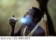 Купить «Hadzabe tribesman smoking from traditional pipe, Lake Eyasi Basin, Tanzania 2006», фото № 25440601, снято 14 ноября 2019 г. (c) Nature Picture Library / Фотобанк Лори