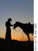 Купить «Silhouette of cowboy with horse, Wyoming, USA.», фото № 25447689, снято 16 февраля 2020 г. (c) Nature Picture Library / Фотобанк Лори