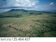 Купить «Dormant volcano in Crater Highlands, Tanzania.», фото № 25464437, снято 5 апреля 2020 г. (c) Nature Picture Library / Фотобанк Лори