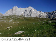 Купить «Picos de Europa upland mountain scene, Cantabria, Spain», фото № 25464721, снято 17 августа 2018 г. (c) Nature Picture Library / Фотобанк Лори