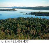 Купить «Forested islands in the Kandalakshsky Bay of the White Sea, Kola Peninsula, Russia.», фото № 25469437, снято 15 декабря 2017 г. (c) Nature Picture Library / Фотобанк Лори