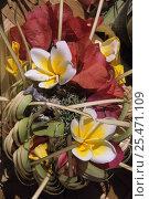 Купить «Hindu flower offering in a temple in Ubud. Bali, Indonesia.», фото № 25471109, снято 25 сентября 2018 г. (c) Nature Picture Library / Фотобанк Лори