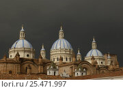 Купить «The Immaculate Conception Cathedral with its three blue domes, Cuenca, Ecuador», фото № 25471997, снято 21 июня 2018 г. (c) Nature Picture Library / Фотобанк Лори