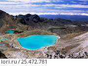Купить «Emerald Lakes, Tongariro NP, North Island, New Zealand», фото № 25472781, снято 17 августа 2018 г. (c) Nature Picture Library / Фотобанк Лори