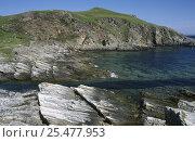 Купить «Rocky shore and clear water off Port Vasgo, Sutherland, Scotland, UK», фото № 25477953, снято 20 ноября 2018 г. (c) Nature Picture Library / Фотобанк Лори