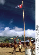 Купить «Independance demonstration of Yali tribes. West Papua, former Irian-Jaya, Indonesia, August 2002 (West Papua).», фото № 25480949, снято 27 мая 2019 г. (c) Nature Picture Library / Фотобанк Лори