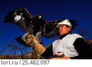 Купить «Kazakh hunter with Golden eagle trained to hunt wolf + fox for fur, Kazakhstan, Asia», фото № 25482097, снято 23 февраля 2019 г. (c) Nature Picture Library / Фотобанк Лори