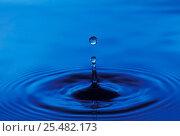 Купить «Water rebounding from impact of single drop, sequence 02-Mar», фото № 25482173, снято 14 августа 2018 г. (c) Nature Picture Library / Фотобанк Лори