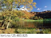 Купить «Loughrigg Tarn, Lake District, Cumbria, UK.», фото № 25483825, снято 22 февраля 2019 г. (c) Nature Picture Library / Фотобанк Лори