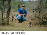 Купить «Lynne Isbell, Primatologist, in the field with Patas monkeys {Erythrocebus», фото № 25484861, снято 14 ноября 2019 г. (c) Nature Picture Library / Фотобанк Лори