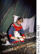 Купить «Sami woman in lavvu (tent) scraping reindeer hide, Karaskok, Samiland (Lapland), Finnmark, Northern Norway. 1997.», фото № 25486161, снято 18 августа 2018 г. (c) Nature Picture Library / Фотобанк Лори