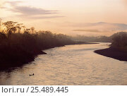 Купить «Lower Urubamba River and locals in canoe seen from Machiguenga Indian Lodge Amazon Rainforest, Peru, South America», фото № 25489445, снято 20 мая 2019 г. (c) Nature Picture Library / Фотобанк Лори