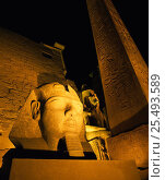 The Obelisk and Ramses II floodlit at night, Luxor Temple, Luxor, Egypt. Стоковое фото, фотограф Gavin Hellier / Nature Picture Library / Фотобанк Лори