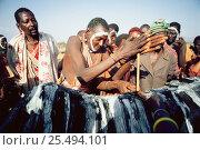 Купить «Maasai 'Emowuo-o-lkiteng ceremony, Kedong Valley, Rift valley, Kenya. Lighting ceremonial fire on back of ritual ox. 1985», фото № 25494101, снято 3 июня 2020 г. (c) Nature Picture Library / Фотобанк Лори