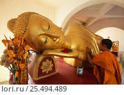 Купить «Reclining Buddha and novice Monk, Wat Pha Baat Tai, Luang Prabang, Laos, South East Asia.», фото № 25494489, снято 23 сентября 2018 г. (c) Nature Picture Library / Фотобанк Лори