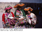 Купить «Native Inca children in traditional clothing with baby goats, Cusco, Peru, South America», фото № 25499633, снято 22 апреля 2019 г. (c) Nature Picture Library / Фотобанк Лори
