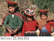 Купить «Quechua indians in traditional everyday dress, Wiloyuc (Huilloc) village, Andes, Peru 2002», фото № 25503653, снято 19 июля 2018 г. (c) Nature Picture Library / Фотобанк Лори