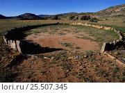 Купить «Stone circle, Namaqualand, South Africa», фото № 25507345, снято 19 июня 2019 г. (c) Nature Picture Library / Фотобанк Лори
