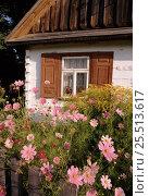 Купить «Traditional Polish house, Podlasie, Poland, Europe.», фото № 25513617, снято 19 августа 2018 г. (c) Nature Picture Library / Фотобанк Лори