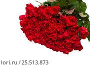 Купить «Большой букет красных роз на белом фоне», фото № 25513873, снято 6 февраля 2017 г. (c) Юлия Бабкина / Фотобанк Лори