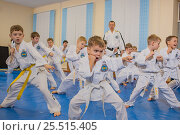 Купить «На тренировке  по теквандо», фото № 25515405, снято 12 ноября 2016 г. (c) Юрий Викулин / Фотобанк Лори