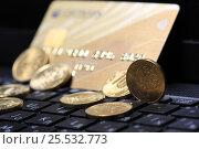 Купить «Монеты и банковская карта на клавиатуре ноутбука», эксклюзивное фото № 25532773, снято 12 февраля 2017 г. (c) Яна Королёва / Фотобанк Лори