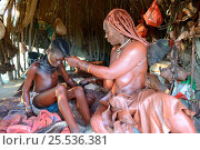 Купить «Himba woman in her hut applying Otjize (a mixture of butter,  ochre and ash) to her daughter's skin. Marienfluss Valley. Kaokoland, Namibia October 2015», фото № 25536381, снято 22 мая 2019 г. (c) Nature Picture Library / Фотобанк Лори