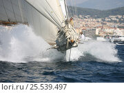 Купить «Classic yacht during Cannes Royal Regatta, France, 2007. All non-editorial uses must be cleared individually.», фото № 25539497, снято 16 июля 2018 г. (c) Nature Picture Library / Фотобанк Лори
