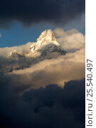 Ama Dablam mountain peak (6,812m) surrounded by clouds, Sagarmatha National Park, Khumbu, Himalayas, Nepal, December 2007. Стоковое фото, фотограф Patricio Robles Gil / Nature Picture Library / Фотобанк Лори