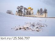 Купить «Ипатьевский монастырь в Костроме зимним днем», фото № 25566797, снято 5 января 2017 г. (c) Natalya Sidorova / Фотобанк Лори