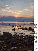 Купить «Солнце садится в тучи на мысе Лабиринтов Большего Соловецкого острова», фото № 25571365, снято 18 августа 2013 г. (c) Дмитрий Тищенко / Фотобанк Лори