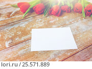 Купить «close up of red tulips and blank paper or letter», фото № 25571889, снято 3 марта 2015 г. (c) Syda Productions / Фотобанк Лори