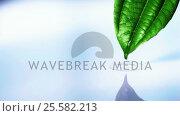 Купить «Water drop falling from leaf into water pool in slow motion», видеоролик № 25582213, снято 22 ноября 2017 г. (c) Wavebreak Media / Фотобанк Лори