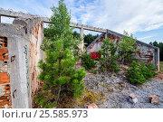 Destroyed and abnadoned house on Trebevic mountain in Sarajevo, Bosnia and Herzegovina. Стоковое фото, фотограф Konrad Zelazowski / age Fotostock / Фотобанк Лори