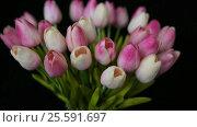Купить «Close-up of a bouquet of tulips on a dark background», видеоролик № 25591697, снято 21 февраля 2017 г. (c) Сергей Кальсин / Фотобанк Лори