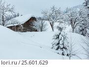 Купить «Winter Carpathian village.», фото № 25601629, снято 15 января 2017 г. (c) Юрий Брыкайло / Фотобанк Лори