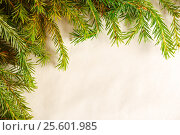 Купить «Christmas fir tree branch as background», фото № 25601985, снято 12 декабря 2015 г. (c) Ярочкин Сергей / Фотобанк Лори