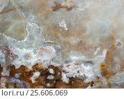 Купить «Macro texture of nature - onyx», фото № 25606069, снято 22 июля 2019 г. (c) ElenArt / Фотобанк Лори