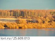Spring landscape - spring forest lit by evening sunlight in vintage tones, фото № 25609013, снято 15 апреля 2016 г. (c) Зезелина Марина / Фотобанк Лори