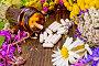 Капсулы в открытой коричневой баночке на доске с цветами, фото № 25614869, снято 14 июля 2015 г. (c) Резеда Костылева / Фотобанк Лори