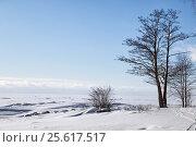 Финский залив зимой. Зеленогорск, фото № 25617517, снято 25 февраля 2017 г. (c) Юлия Бабкина / Фотобанк Лори