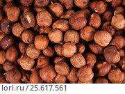 Купить «Фон: орехи фундук», фото № 25617561, снято 24 февраля 2017 г. (c) Литвяк Игорь / Фотобанк Лори